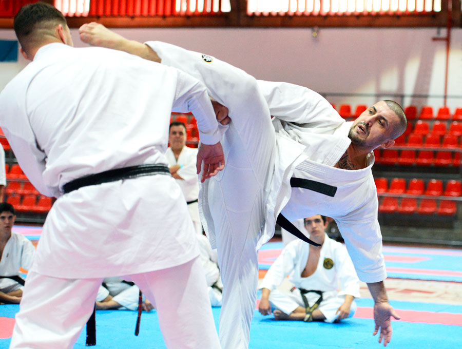 World karate legend preaches union of all countries and predicts major achievements for ITKF