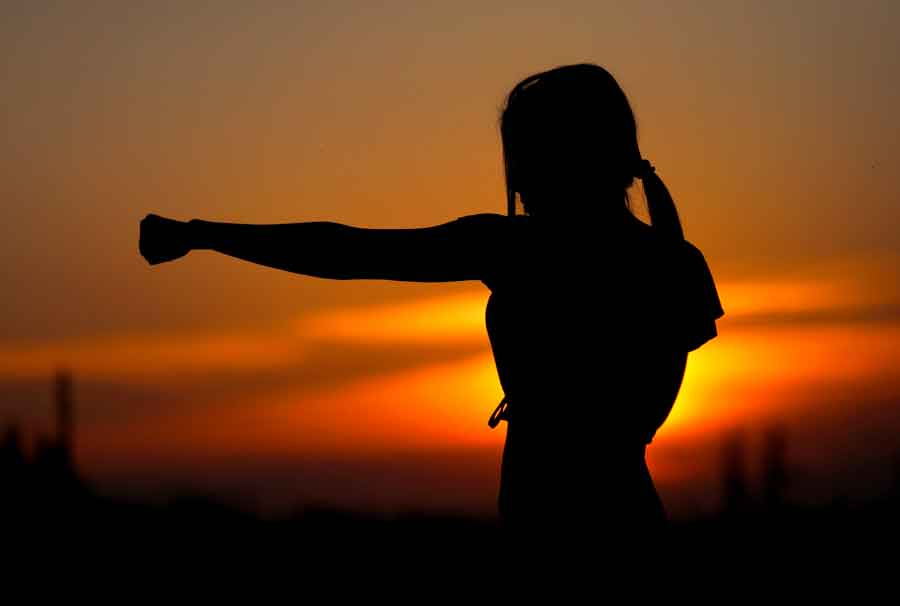 Budô: a transcendente força de um soco, na luta e na vida
